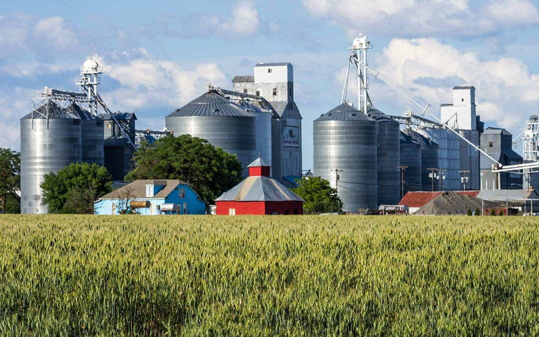 Large scale commodity farm with large grain silos