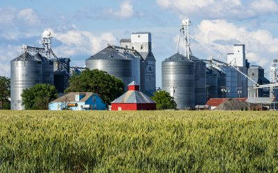 Why is Commodity Farming Important to Farmers and Consumers Alike?